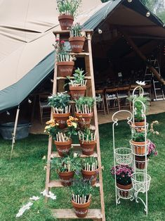 #wedding #tableplan #weedingseating #tipi Find your seat. Wedding tables. Seating. Dinosaurs. Herbs. Plant love.  Adam and Cassie Wedding Chaucer Barn, Norfolk, England