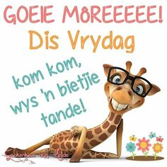 Goeie more. Good Morning Wishes, Day Wishes, Good Morning Quotes, Friday Qoutes, Friday Humor, Greetings For The Day, Morning Greetings Quotes, Cute Quotes, Great Quotes