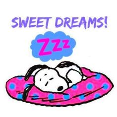 💤 Sweetest of dreams! Charlie Brown Quotes, Charlie Brown Y Snoopy, Snoopy Love, Snoopy And Woodstock, Good Night Greetings, Good Night Messages, Good Night Quotes, Snoopy Images, Snoopy Pictures