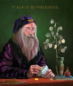 Albus Dumbledore Harry Potter and the Philosophers Stone Harry Potter Fan Art, Harry Potter Film, Harry Potter Jim Kay, Harry Potter Pottermore, Harry Potter Magie, Harry Potter Tumblr, Harry Potter World, Slytherin, James Potter