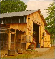 Little River Farms - homeschool day while we're there!