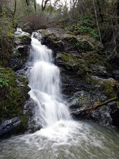 Hurrah! It's finally raining. Nature has once again turned on the tap to the many amazing waterfalls around Marin County. It's great fun to soak up the many breathtaking waterfalls. I asked Ranger Mike from the Marin County Parks Department for his top 10 waterfall hikes.