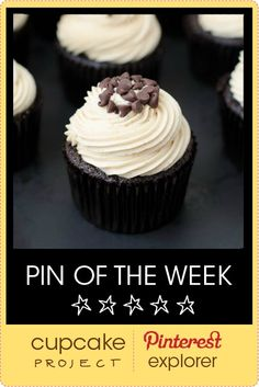Mocha Chocolate Chip Espresso Cupcakes from The Cake Merchant @Natasha S S Merchant (The Cake Merchant) – Pin of the Week - from Cupcake Project