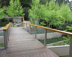 IPE wood and wire railing with wood handrail- for Pond dock Grass Terraces - contemporary - landscape - san francisco - Shades Of Green Landscape Architecture Ramp Design, Deck Railing Design, Patio Railing, Cable Railing, Fence Design, Rebar Railing, Cable Fencing, Modern Railing, Steel Railing
