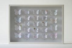 Tracey Bush | Arts Inspiration