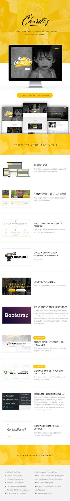 Charitiz - Charity, Donation & Auction WP Theme