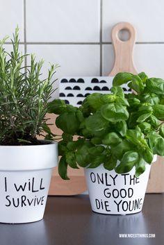 Motivationssprüche für Küchen-Kräuter, Lustige Kräuter-Töpfe >> I will survive - funny planters / pots for kitchen herbs and flowers, urban gardening
