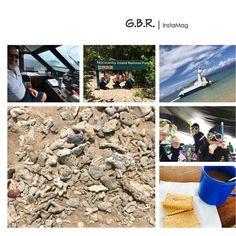 2016.1.28(Thu)-2.1(Mon) --Cairns in Australia  -- 日目 陽気な船長さんともじもじくんシュノーケル 死んだサンゴ循環 船内でのコーヒーサービス そういえばオーストラリアで飲んだコーヒーはどこのやつも全部美味しかった あんまり好きじゃなかったけど旅行きっかけに好きになったくらい  #Cairns  #Australia #CRN #greatbarrierreef  #無人島 #船 #island #世界最大 #サンゴ礁 #サンゴ #シュノーケル #Schnorchel #モジモジくん #オーストラリアのコーヒー飲んで人生変わった #世界遺産 #coffee #cookie #ヒマっていうライン名 #生物多様性 #iPhone6S by motumiyu http://ift.tt/1UokkV2