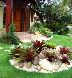 Círculos en el patio en medio de los pastelones para sembrar arbolitos y arbustos y rodeados de gravilla blanca