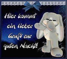 einen schönen Abend und eine gute Nacht und schöne Träume - http://guten-abend-bilder.de/einen-schoenen-abend-und-eine-gute-nacht-und-schoene-traeume-153/