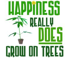 Come gather round the happiness tree! #cannabis #420 #mmj #marijuana #weed