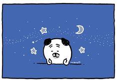Nagano, Twitter Sign Up, Cute Animals, Jokes, Thankful, Snoopy, Bear, Make It Yourself, Shit Happens