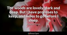 The woods are lovely, dark and deep. But I have promises to keep, and miles to go before I sleep. - Robert Frost