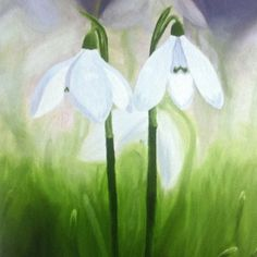 Snowdrop print taken from my original oil on canvas. Flower Painting Canvas, Painting Snow, Flower Canvas, Painting For Kids, Watercolor Flowers, Watercolor Paintings, Art Paintings, Snow Drops Flowers, Flower Drawing For Kids