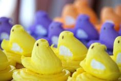 Easter cupcakes with Chick Peeps!