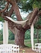 draping fabric from trees - Bing Images @Christina Duvall  this so looks like where y'all got married!!!