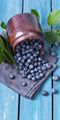 DSF iqf organic bulk frozen and fresh fruit blueberries from China Vegetables Photography, Fruit Photography, Fresh Fruits And Vegetables, Fruit And Veg, Photo Fruit, Blueberry Fruit, Think Food, Delicious Fruit, Summer Fruit