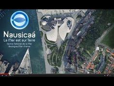 Grand Nausicaà à Boulogne-sur-Mer, le plus grand aquarium d'Europe | nordmag.fr