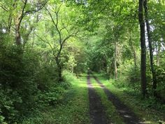 Covering 22-miles, the Wallkill Valley Rail Trail is considered to be one of America's most iconic rail trails.