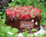 Oreo torta s tvarohom - Recept Oreo Cheesecake, Oreos, Pavlova, Tiramisu, Food And Drink, Tiramisu Cake