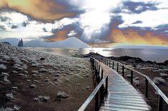 Galapagos Walk @ Bartolome