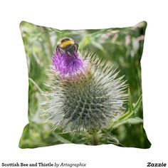 Scottish Bee and Thistle Throw Pillows