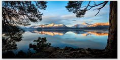 Roots and Mountains Derwent Water Canvas Print