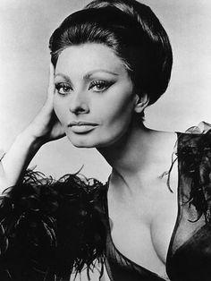Sophia Loren, c.1960s Foto bij AllPosters.nl