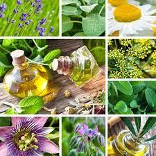 Tirei uma carta: As nove personalidades segundo a Aromaterapia