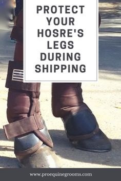 Pro Equine Grooms - Leg protection for shipping