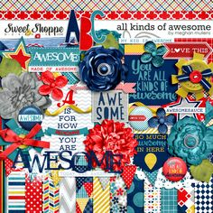 All Kinds Of Awesome by Meghan Mullens