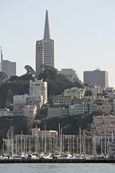 View of the Marina, San Francisco, California
