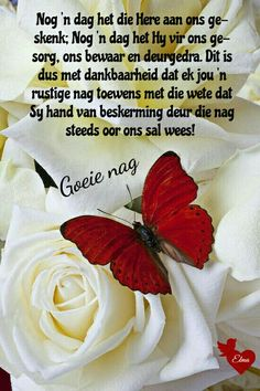 Good Night Blessings, Good Night Wishes, Good Night Quotes, Day Wishes, Evening Greetings, Goeie Nag, Goeie More, Afrikaans Quotes, Special Quotes