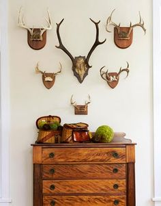 Antlers, fishing creels & antique chest - in the Adirondacks - interior designer Ann Stillman O'Leary's mountain home - rustic, yet sophisticated Trophy Rooms, Antique Chest, Metal Tree Wall Art, Lodge Style, Man Room, My New Room, Rustic Decor, Rustic Theme, Country Decor