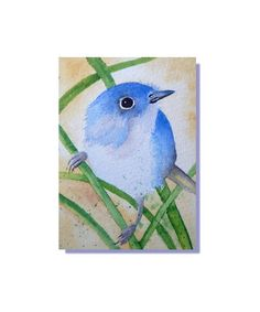 ACEO Original Art Blue Grey Gnatcatcher Backyard Bird  Watercolor Painting #Realism