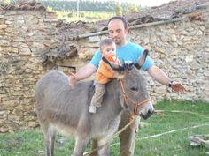 Titan cuida de pablito ante la mirada de su papi alejandro. Cortesía: Burrosminiatura.com, Aras de los Olmos, Valencia (España).