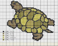Cette fois-ci une petite tortue - Le blog de Mamou