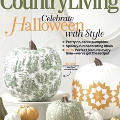 Country living decoupage pumpkins!! Love the toile!!