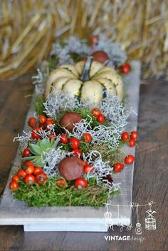 Fall Wreaths, Christmas Wreaths, Christmas Decorations, Holiday Decor, Diy Art, Floral Arrangements, Planters, Projects To Try, Thanksgiving