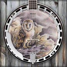 Barn owl banjo head... I want one