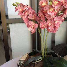 Nosso lindo centro de mesa em aço inox Orion em uma montagem super fácil de um arranjo permanente com lindas orquídeas no tom rosé Orchid Flower Arrangements, Flower Arrangement Designs, Vase Arrangements, Flower Vases, Types Of Flowers, Fake Flowers, Artificial Flowers, Beautiful Flowers, Decoration Plante