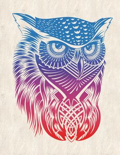 Poster | OWL OF COLOR von Rachel Caldwell | more posters at http://moreposter.de