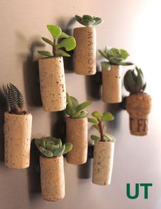 MINI DIY CORK PLANTERS (via http://www.upcyclethat.com/cork-planters/3086/)