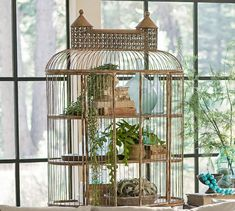 Shelved Birdcage. Filled with plants and decorative birds, an indoor birdcage is a simple way to create a dramatic springtime display.
