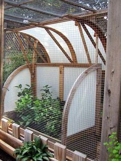 Make a Critter-Proof Garden Greenhouse- I need this.  The deer ate my two blueberry bushes in the spring.