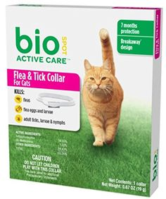 BioSpot Active Care Flea and Tick Collar for Cats, 13-Inch -- Hurry! Check out this great product (This is an amazon affiliate link. I may earn commission from it)