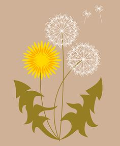 Mackenzie Griffin- There is emphasis on the yellow flower of the dandelion. Your eyes are drawn to the bright yellow rather than the two white flowers of the dandelion.
