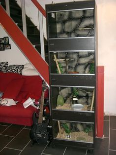 IKEA BESTA Terrarium for snakes - could use larger/wider for beardies. Terrariums, Ikea Terrarium, Terrarium Reptile, Terrarium Ideas, Gecko Terrarium, Reptile Room, Reptile Cage, Reptile Tanks, Rabbit Cages