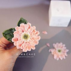 "1,265 Likes, 4 Comments - Butter cream flower cake&class (@kimncake) on Instagram: ""A gerbera means mystique in the language of flowers…"""