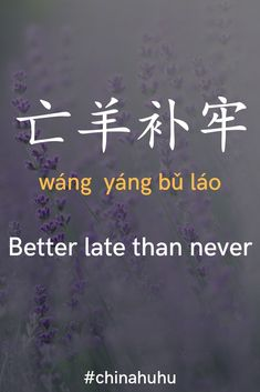 Chinese Slang, Chinese Phrases, Chinese Words, Chinese Lessons, French Lessons, Spanish Lessons, Teaching Spanish, Teaching English, Rare Words